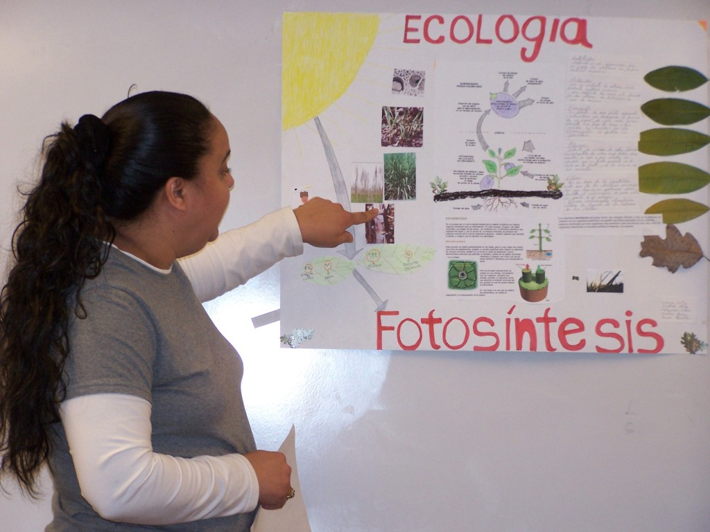 adult learner points to poster on photosynthesis